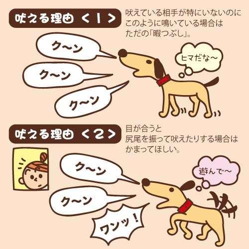 犬の鳴き声でトラブルになった事ありますか?