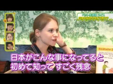 日本のペット生体販売&殺処分に世界がドン引き・・・ - YouTube