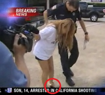 「日本人女性とやれます」…アメリカで、朝鮮人売春婦のダマシ文句 - 朝鮮人の犯罪