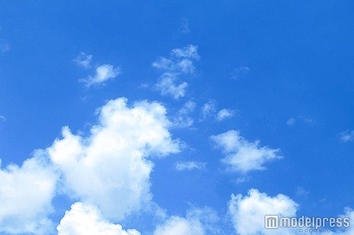 山下智久が活躍 「ネプリーグ」賞金100万円を熊本地震に全額寄付 - モデルプレス