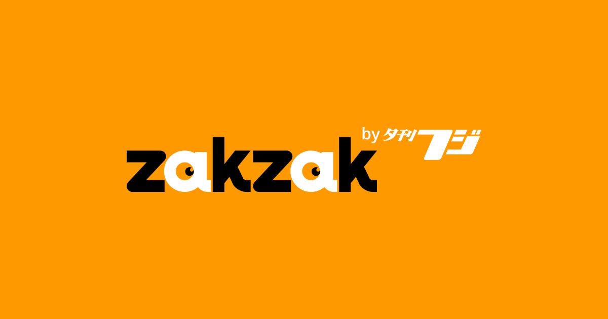 【家電の世界】史上最高の吸引力、パナソニックのスティック掃除機「パワーコードレス MC-SBU820J-W」 (1/2ページ) - zakzak