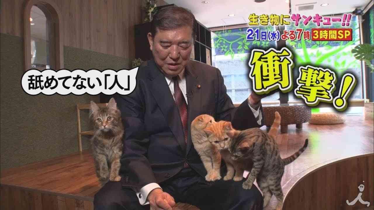 石破茂がネコを惹きつける!? 本人協力のもと大検証!! 2/21(水)『生き物にサンキュー!!』【TBS】 - YouTube