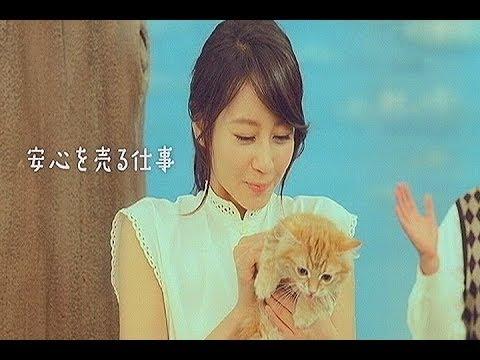 いいなCM 三井住友海上 堀北真希 小林賢太郎 2本立て - YouTube