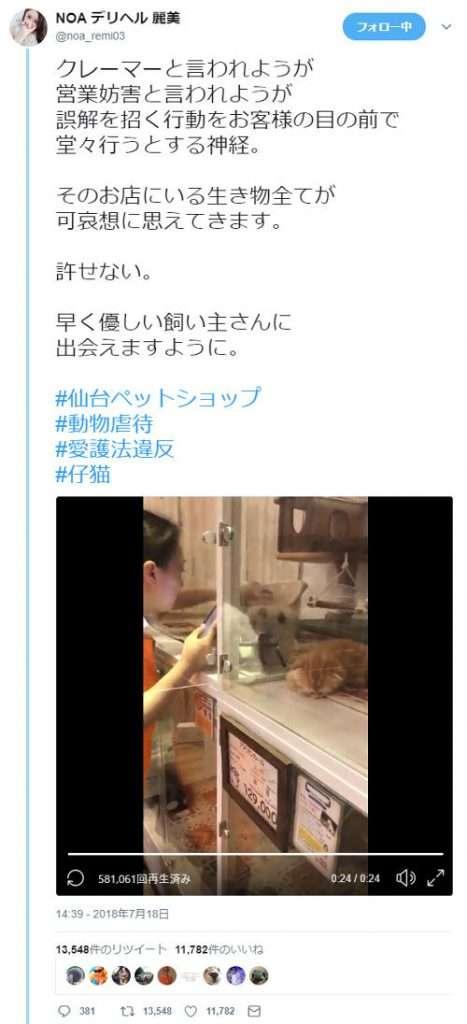 仙台のペットショップが仔猫をわしづかみにして揺さぶるなどの虐待 客が動画撮影し告発 企業側が謝罪 | ゴゴ通信