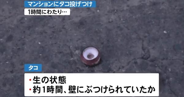タコ投げつけ事件 札幌市中央区で1時間にわたり外壁にタコぶつける   ニュース速報Japan