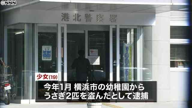 横浜市の幼稚園からうさぎ2匹を盗み切り刻んだ容疑、19歳の少女逮捕