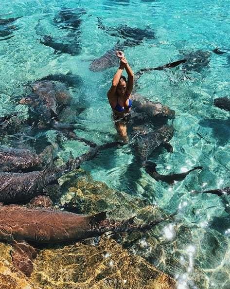 女性インスタグラマー、SNS用写真を撮影中にサメに襲われる
