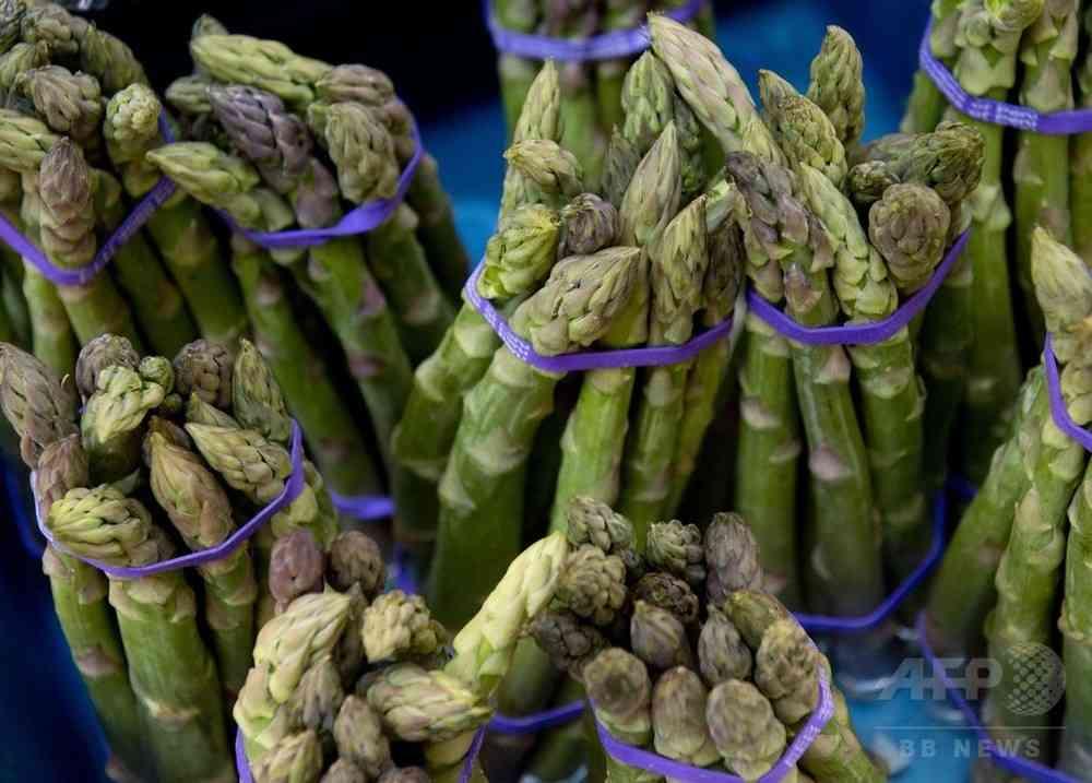 「アスパラガス尿」 嗅ぎ分けのカギは遺伝子にあり 研究 写真1枚 国際ニュース:AFPBB News