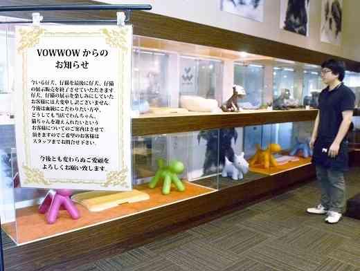 犬猫展示販売中止、ペットショップが決断 飼育放棄減を願い(福井新聞ONLINE) - Yahoo!ニュース