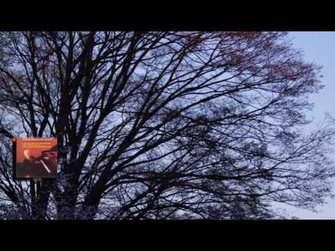 ショパン:《子守歌》変ニ長調 Op.57 ルービンシュタイン 1962 - YouTube