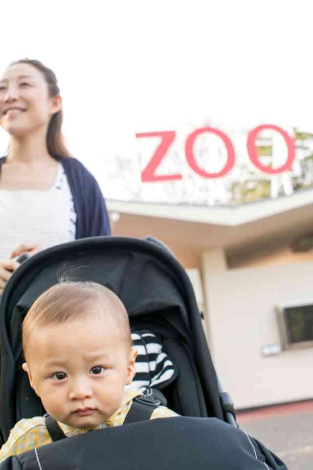 家族写真★王子動物園☆   クワバタオハラ小原正子オフィシャルブログ「女前。」powered by Ameba