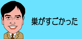 猛暑の日本列島でスズメバチが大発生! 巨大な巣が各地でゴロゴロ、気をつけて! : J-CASTテレビウォッチ