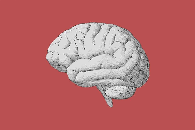 気持ちが若い人たちは、脳も本当に若かった 研究結果