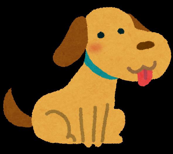 犬を飼うタイミング