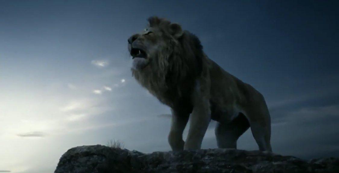 ライオン・キングの画像 p1_27