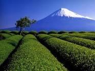 「地域ブランド調査2013」都道府県ランキング発表!1位北海道、2位京都、3位沖縄、4位東京、5位神奈川…最下位茨城
