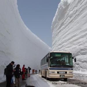 雪国、北国あるある