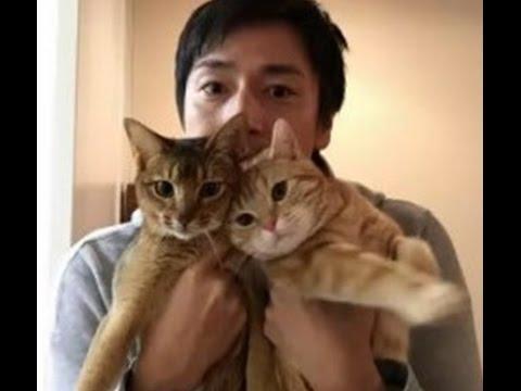 彼女いらない「猫男子」急増中…キャット驚く空前のブーム!〝ネコノミクス〟経済効果は約2兆3000億円