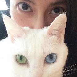 柴咲コウの愛猫が放つオーラに「似てますね!」
