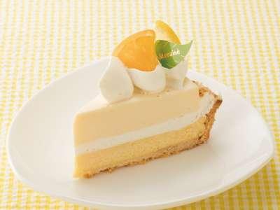 【プチプラ】美味しいチーズケーキ