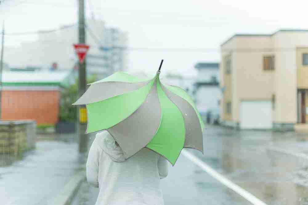 傘を盗まれたことがある人