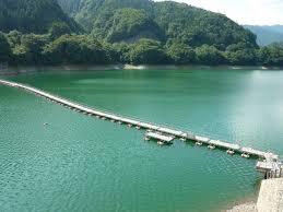 【リオ五輪】プールの水が突然緑色に シンクロなどの会場