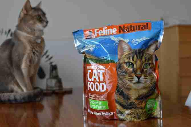 飼い猫に関する総合トピ