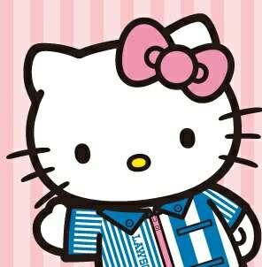 キティちゃん好きな人