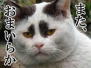 朝日新聞の新作歌舞伎記事で印象操作?「二度と関わらない」と識者
