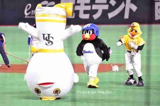 NMB48の須藤凛々花に対抗?!つば九郎「けっこんしません!!」