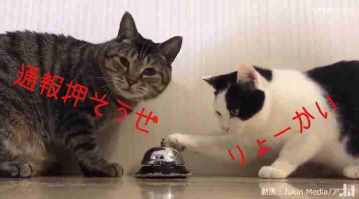 島根県に大雨の特別警報