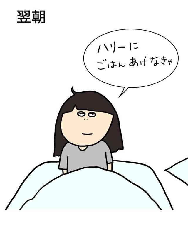 今日朝起きて1番にしたことは?