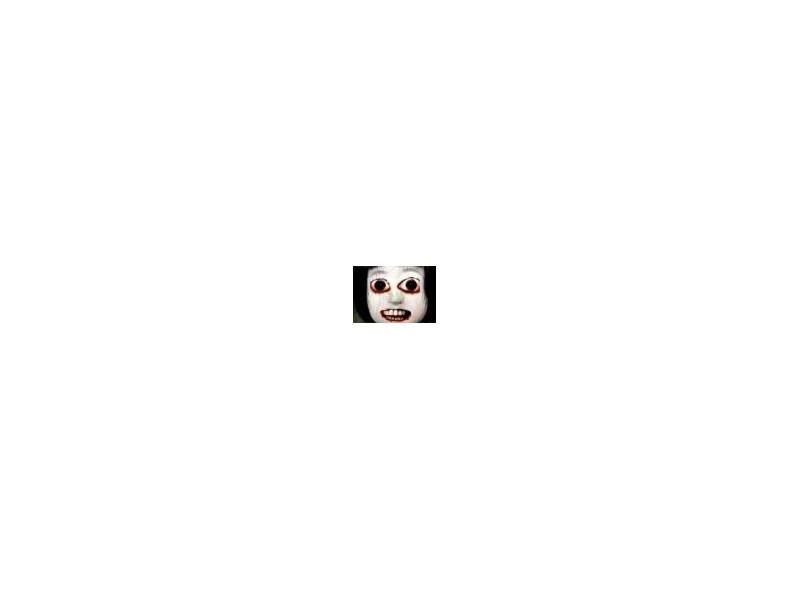 島崎遥香、Instagramを開設 ファンから歓喜の声続々