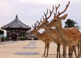 奈良県民の集い