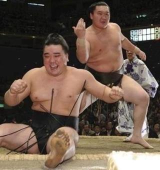 好きなお相撲さんっていますか?