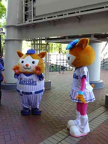 【野球】〜12球団ファン集合〜