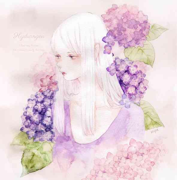 【画像】紫陽花