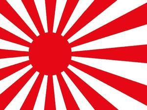 日本サポーターの旭日旗での応援、韓国の教授がFIFAに懲戒を要求