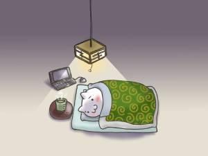 朝早く目が覚めてしまったら何しますか?