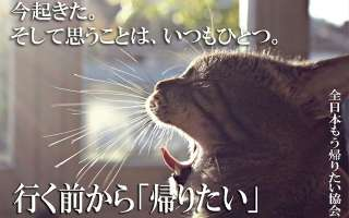 集え!寝不足JAPAN!