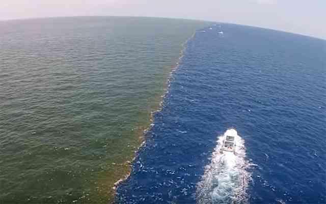 【閲覧注意】海のこわ〜い画像