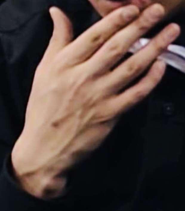 手が綺麗な芸能人
