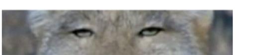 """浜崎あゆみ""""ドアップ""""の美貌に反響「美しい」「肌綺麗」天パショットも公開"""
