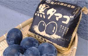 箱根のオススメスポット