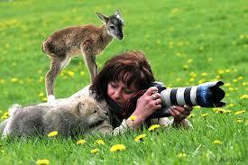 人間になついてる動物の画像を貼るトピ