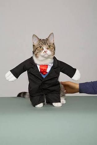 スーツ姿のイケメン画像をください