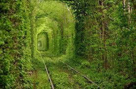 トンネルの画像を貼るトピ