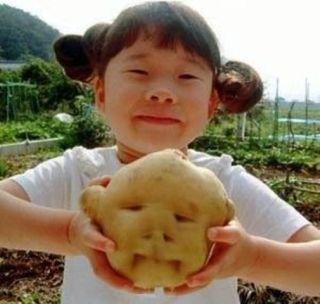 おもしろい形をした野菜の画像を貼るトピ