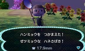 香川照之 すごすぎる奇跡!昆虫界の宝石ハンミョウを秒速捕獲