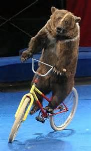 ガル民の自転車事情、そして想い出